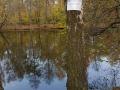 VKP: rybník - rybářský revír